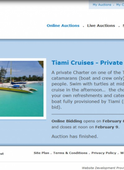 Jenna Trust Auction Charity Website Project From Caribbean New Media